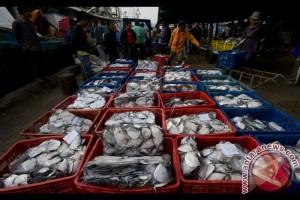 Cuaca Pengaruhi Harga Ikan Naik di Pasaran