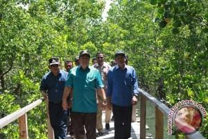 DKP: Kawasan Mangrove di Kendari Semakin Menyusut