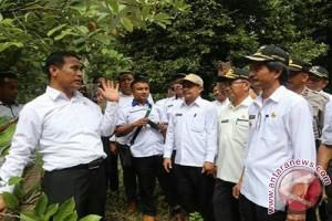Bupati Harapkan Menteri Pertaian Bantu Konawe Kepulauan