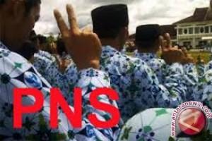 339 PNS Baubau Mendapatkan Satya Lencana Kemerdekaan