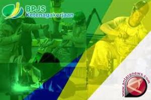 1.250 Honorer Baubau Dapat Asuransi BPJS Ketenagakerjaan