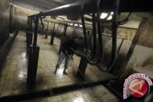 Sultra Mengusulkan Penambahan Rumah Potong Hewan