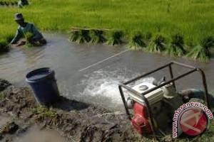 Pemkot Kendari Minta Lahan Pertanian Tidak Dialihfungsikan