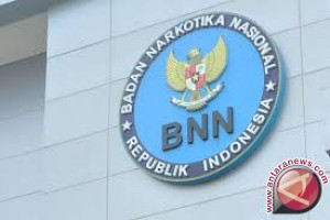 BNN Sultra tangani delapan kasus narkoba