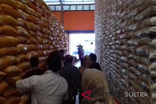 Bulog Sultra: stok beras 17.000 ton