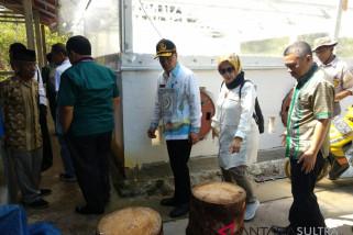 FAO kunjungi pengolahan  sagu di Konawe Selatan