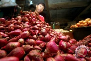 Harga bawang merah turun di Palembang