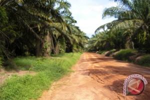 Enam desa di Musirawas akan dikeluarkan dari kawasan HTI