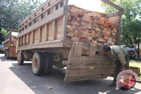 PDIP minta eksekutif serius hentikan angkutan kayu
