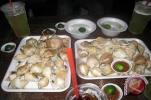 Datanglah ke Bangka nikmati masakan siput gonggong