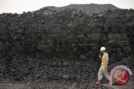 Perusahaan batu bara pemegang kontrak lama