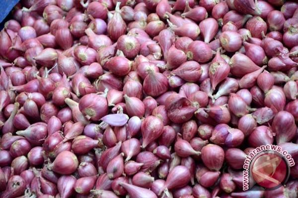 Harga bawang dan cabai di Palembang naik