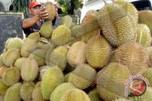 Omzet pedagang durian turun akibat musim penghujan