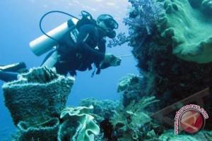 Kondisi terumbu karang kepulauan Mentawai memburuk