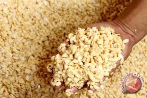 Produksi kedelai Jambi diprediksi 2.625 ton