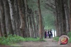 Ribuan warga kunjungi punti kayu