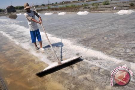 Garam impor belum masuk wilayah Sumsel