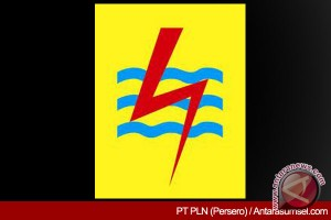 PLN gandeng pemda maksimalkan sosialisasi subsidi listrik