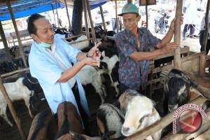 Legislator: pihak terkait lakukan pengawasan hewan kurban