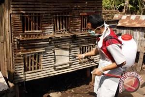 Seorang warga Bandarlampung terinfeksi flu burung
