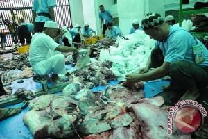 Pembagian daging kurban