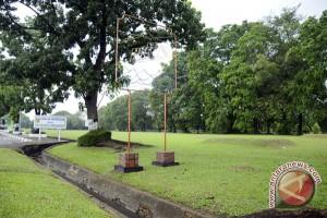 Dinas perumahan programkan penghijauan ganti pohon mati