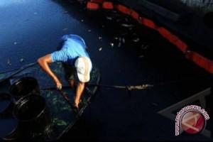 BLH diduga tutupi pencemaran limbah Minanga Ogan