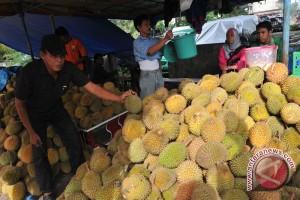 Sensasi menikmati durian sambil duduk di tikar