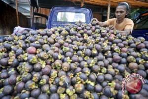 Indonesia minta Tiongkok transparan soal manggis