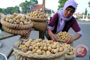 Kemristekdikti Kaji Buah-buahan Lokal Nusantara