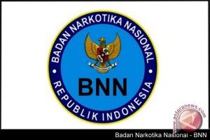 BNN Sumsel tetap lakukan gerakan P4GN
