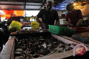 Harga ikan gabus di Palembang alami penurunan