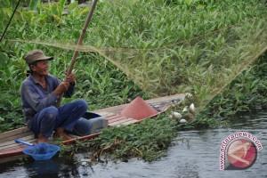 Dinas Perikanan bentuk kelompok pengawas sungai