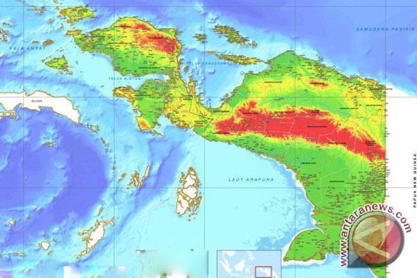 Ada empat faktor penyebab kematian orang asli Papua