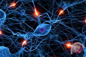 Pakar: Landasan ilmiah metode cuci otak lemah