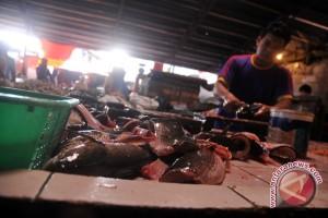 Tingkat konsumsi Ikan di Sumsel tergantung daya beli