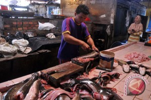 Harga ikan di Palembang naik
