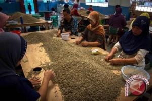 Harga biji kopi kering Sumsel alami penurunan