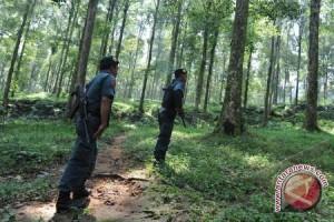 Musirawas ajukan penambahan jumlah polisi kehutanan atasi pencurian