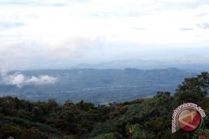 Indonesia berperan dalam kemitraan global perlindungan hutan