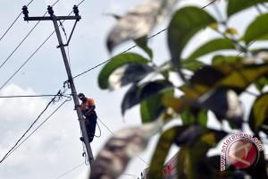 Antisipasi pemadaman PLN bersihkan ranting tanaman