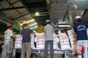 Pusri siapkan stok ribuan ton urea