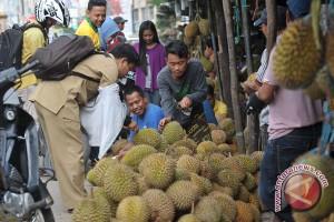 Ribuan warga tumpah ruah ikuti festival hasil hutan bukan kayu