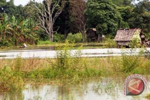 Banjir masih terjadi di Mesuji Lampung
