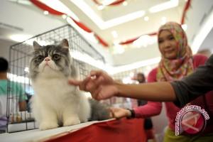 Perhimpunan dokter hewan Jambi gelar bakti sosial