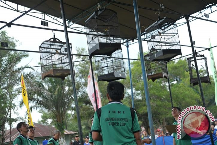Ratusan peserta ikut lomba burung berkicau
