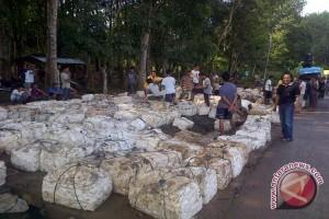 Informasi pasar lelang, harga bokar petani Sumsel Rp8.313/kg