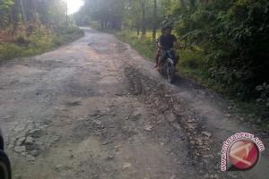 Infrastruktur jalan di Sumsel 50 persen rusak