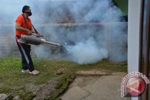 Permintaan pengasapan nyamuk di Palembang meningkat