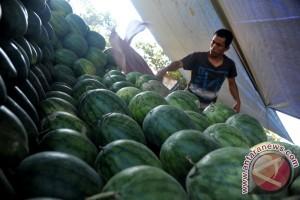 Pedagang buah akui daya beli masyarakat tinggi